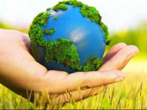 How Would You Like To Celebrate The World Environment Day